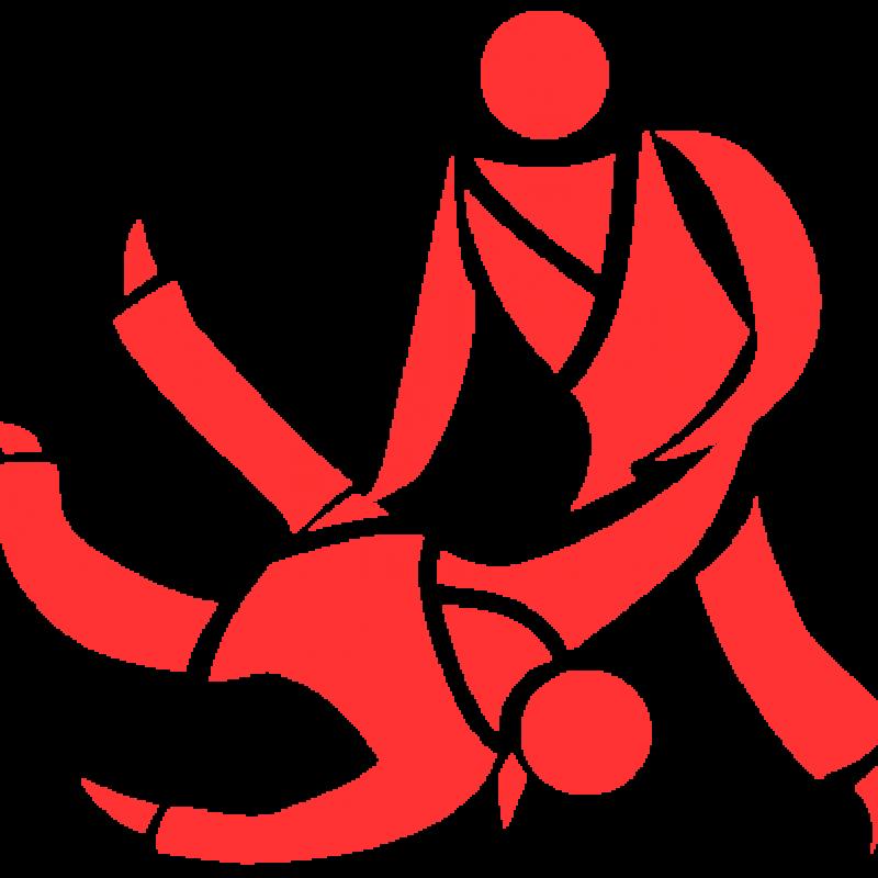judo, cours, enfants, adultes, toulouse, aseat, 31, haute-garonne, art martial, arts martiaux